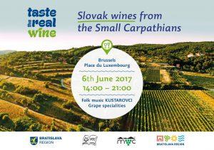 Taste the wine from Slovakia